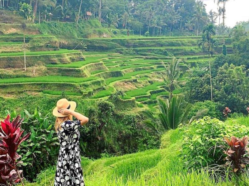 Bali White Water Rafting and Ubud Rice Terrace Tour