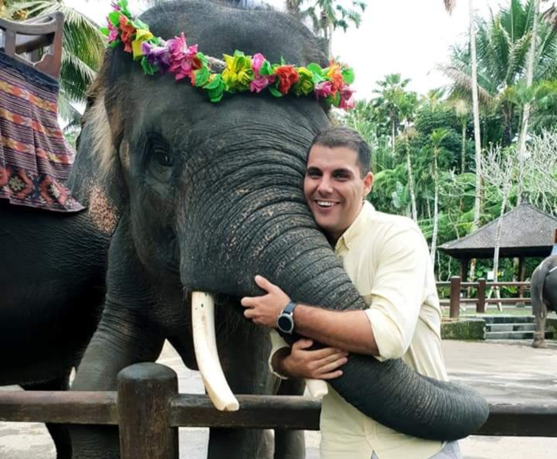 Elephant Safari Park and Ubud Tour