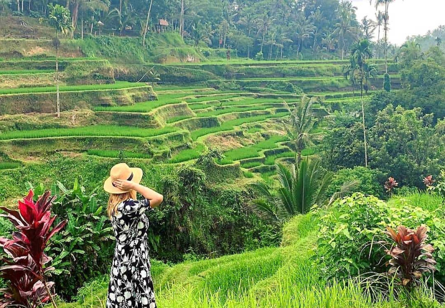 Bali White Water Rafting and Ubud Rice Terrace Tour
